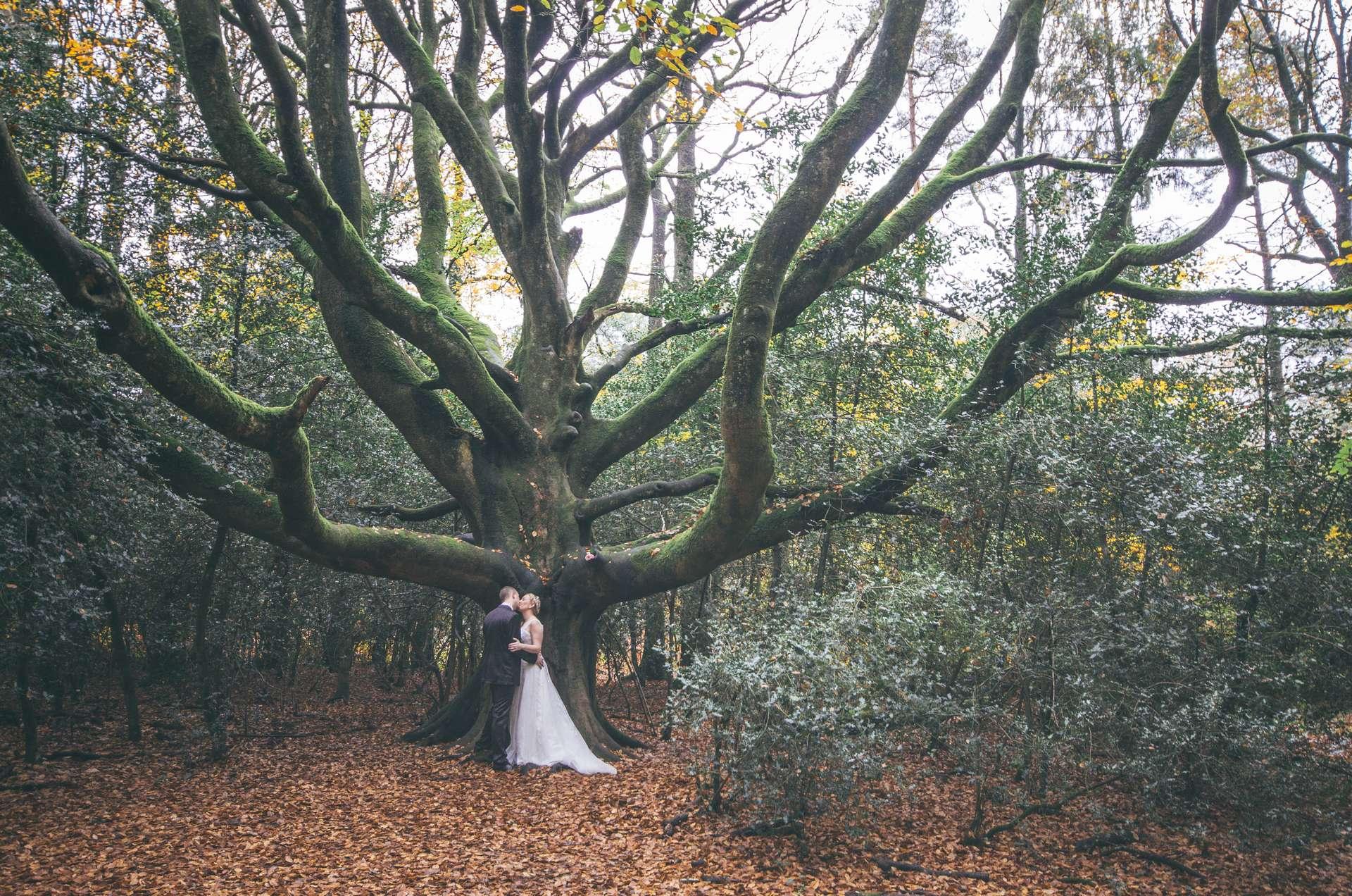 tarifs prestations photographe mariage bretagne saint brieuc ctes darmor - Photographe Mariage Saint Brieuc